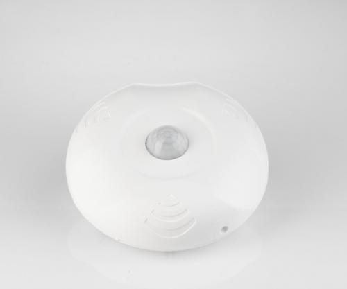 Ceiling surface mounted motion sensor